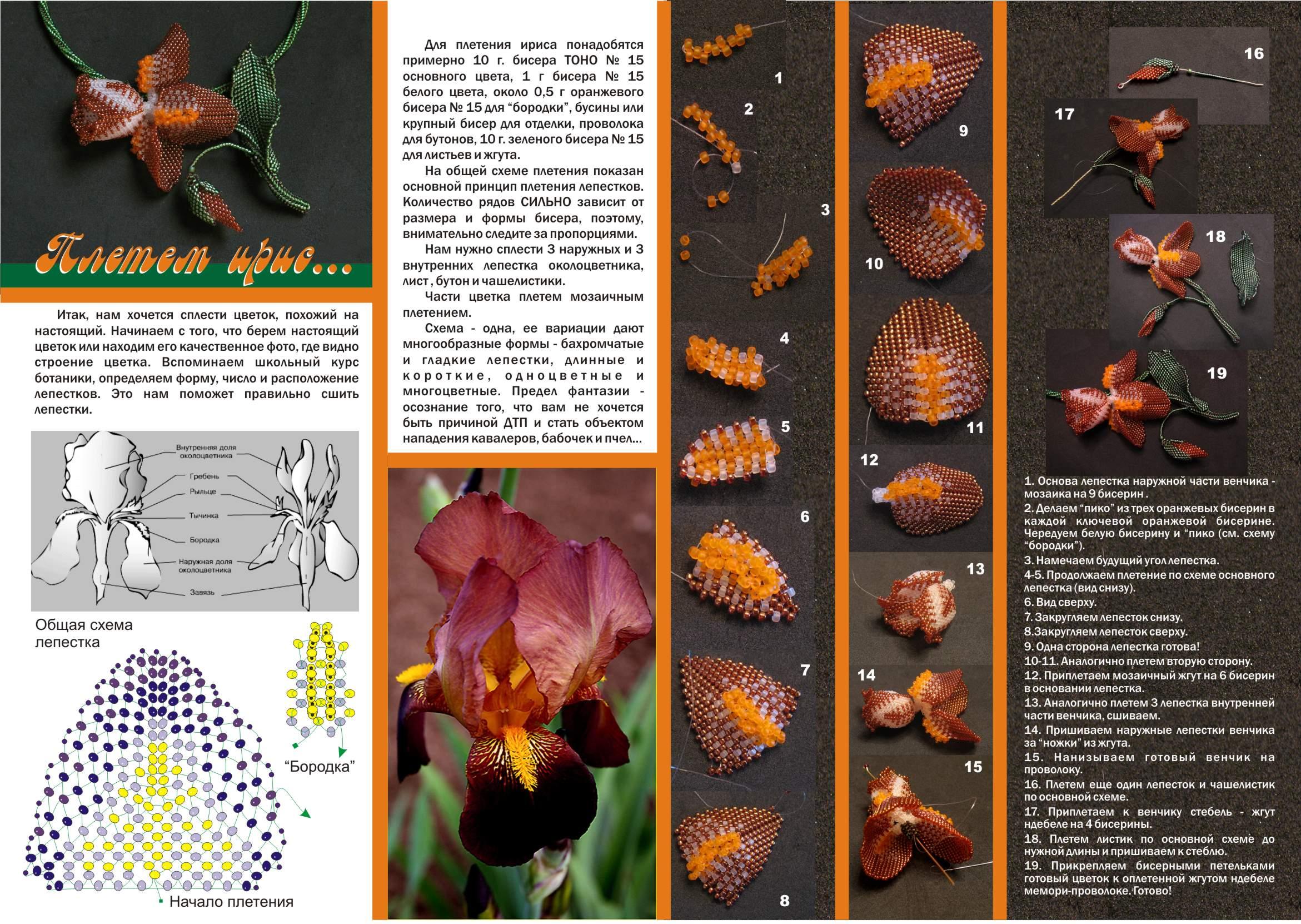 мазь и капсулы троксевазин цена. из бисера орхидеи подробно схему.